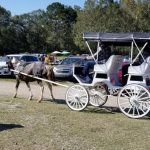 FA202-GarageSale-Carriage-Rides